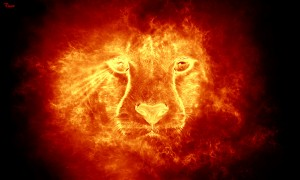 Set the lion on fire